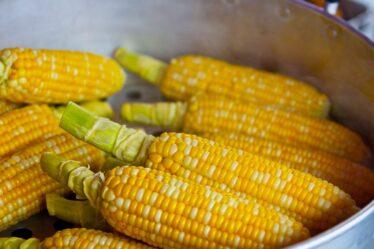 ¿Cuánto tiempo para cocinar el maíz en la olla a presión?