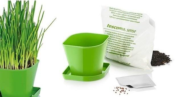 Kit de cultivo de cebollino Tescoma