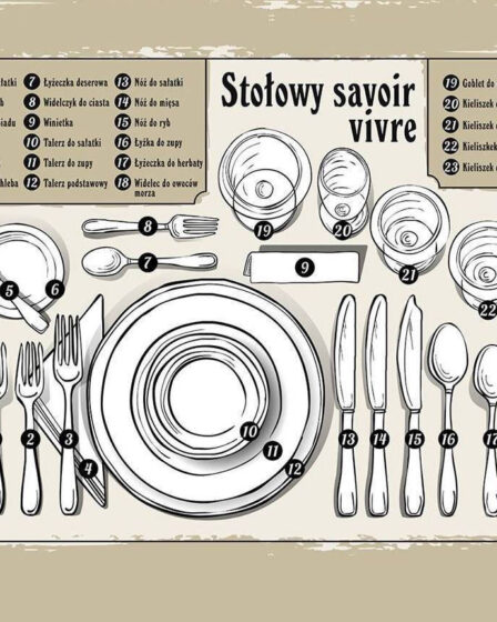 Savoir vivre en la mesa infografía