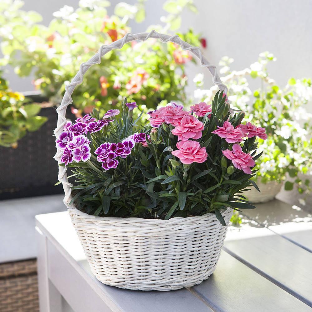 canasta de mimbre para flores y hierbas flores