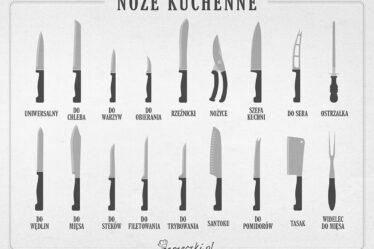 Infografía - Tipos de cuchillos de cocina